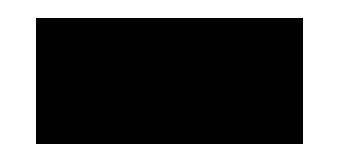 logo-selfiestick.com